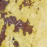 Takkiya detail Gina Parr Wychwood Art