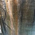 Virginia Ray Under A Watchful Eye Wychwood Art signature