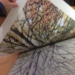 Autumn Beeches in progress
