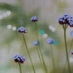 Dylan Lloyd, Island Garden Border V, Original Landscape Painting, Nature Art 4