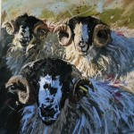 James Bartholomew, Rough Fell Tups, Limited Edition Giclee Print, Animal Art, Paintings of Sheep 2