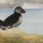 Judith Yarrow, Faroes – Puffin, Mixed Media Painting, Gouache, Watercolour, Collage on Paper, Animal Art, Bird Art 5