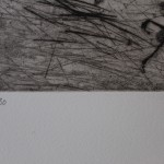 Kate Boxer, Jackdaw, Limited Edition Drypoint Print, Animal Art 2