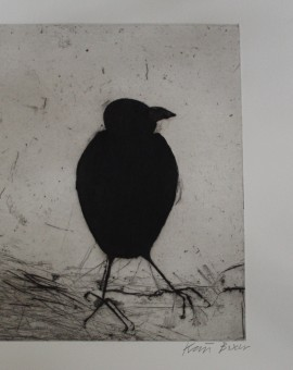 Kate Boxer, Jackdaw, Limited Edition Drypoint Print, Animal Art 6