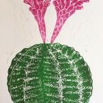 Joanna Padfield Gymnocalycium Linocut Print Wychwood Art