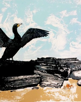 Tim Southall. The Cormorant.Silkscreen print, animal art, affordable art