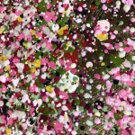 Nicky Chubb, Shimmering Spring, Nature Art 7