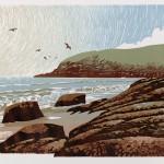 Ian Phillips_Sunshine Seagulls