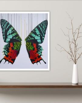 Louise McNaught 4