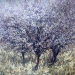 Mariusz Kaldowski, Cherry Trees, Pink Art