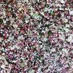 Nicky Chubb, Gentle Spring Blossom, Pink Art, Spring Art, Tree Art, Warm Art 6