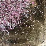 Nicky Chubb, Gentle Spring Blossom, Pink Art, Spring Art, Tree Art, Warm Art 8