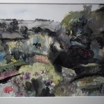 A cottage garden in Monmouthshire 5