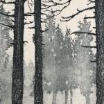 Deer in Winter. Tim Southall. Detail 2