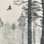 Deer in Winter. Tim Southall. Detail 3
