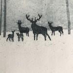 Deer in Winter. Tim Southall.. Detail 1