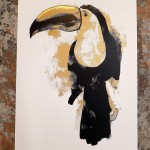 G Dobson toucan gold 2