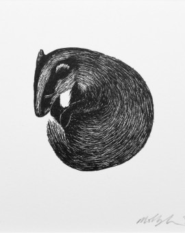 Molly Lemon, Sleeping Badger, Rural Art, Affordable Art