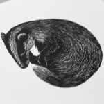 Molly Lemon, Sleeping Badger, Rural Art, Affordable Art 6