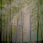 sunlight forest close2