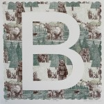 B is for Bear Clare Halifax