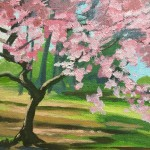 Batsford Blossom study 2
