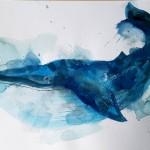 Blue whale, Gavin Dobson, watercolour