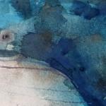 Blue whale, Gavin Dobson, watercolour2