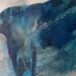 Blue whale, Gavin Dobson, watercolour4