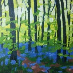 Bluebell Wood study 1