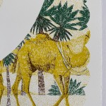 C is for Camel Clare Halifax 4