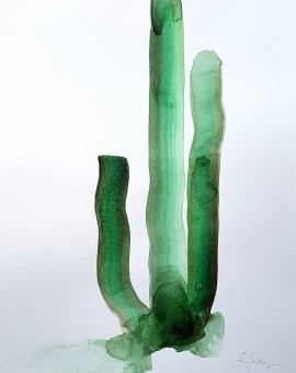 Cactus, Gavin Dobson, Water colour