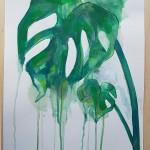 Cheeseplant, Gavin Dobson, Watercolour5