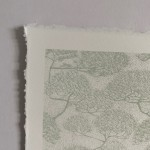 Clare Halifax, Leafing San Fancisco Bay, Sky detail