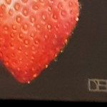 Dani Humberstone, Red Strawberry, Detail, Original oil painting