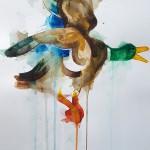 Flying Duck, Gavin Dobson, watercolour1