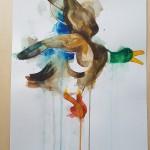 Flying Duck, Gavin Dobson, watercolour5