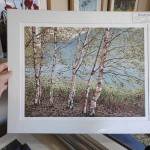Grasmere Birches mounted