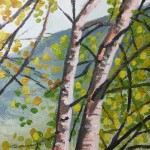 Grasmere Birches study 2