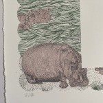 H is for Hippo Clare Halifax 1