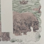 H is for Hippo Clare Halifax 3