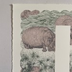H is for Hippo Clare Halifax 4