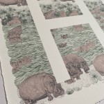 H is for Hippo Clare Halifax 6