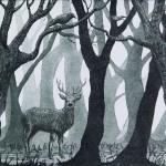 Jane Peart Forest Glen