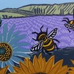 KateHeiss_SunflowerFields-CloseUp