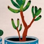 Kerry Day Succulents 1 d