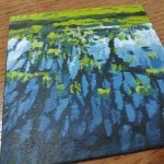 Lakeside Puddle study 1c close up
