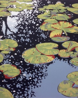 Lily Pond Reflections - Alexandra Buckle