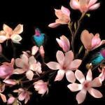 Magnolia Angelic
