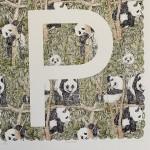 P is Panda Clare Halifax